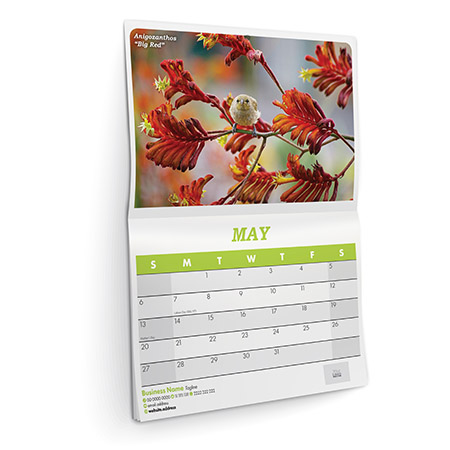 Main product image for Wall Calendars