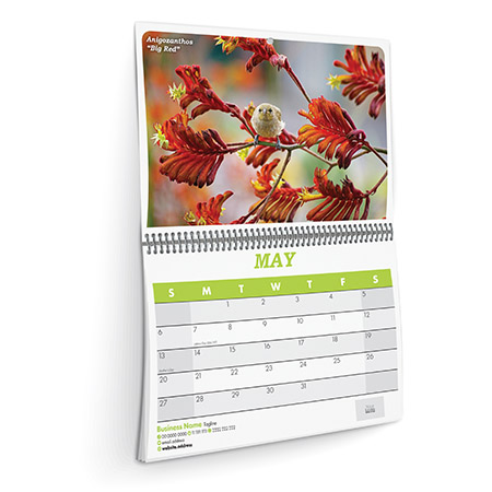 Alternative product image for Wall Calendars